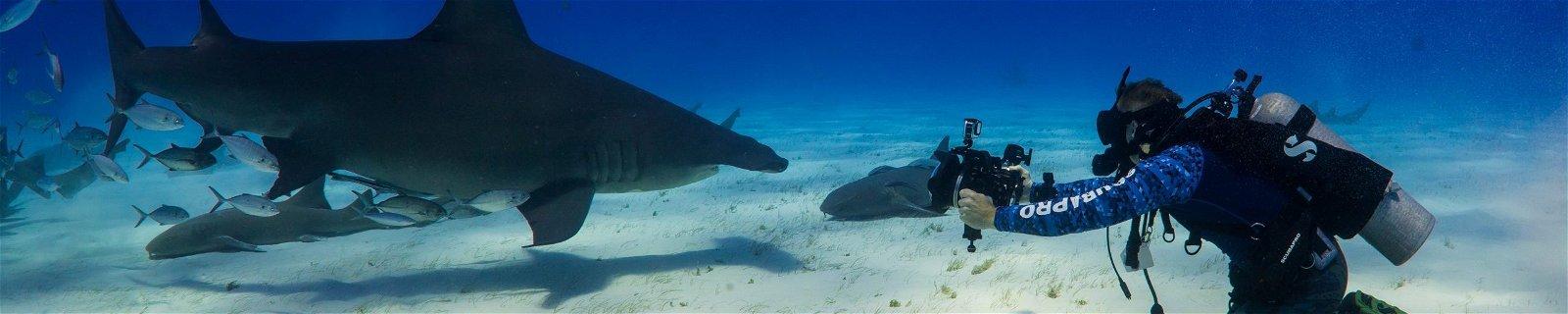James Glancy diving